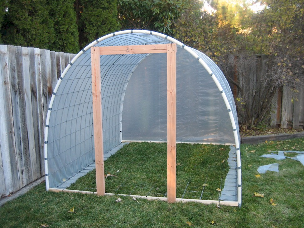 Adam j fyall southwestern sunflower for Making a small greenhouse